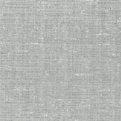 Schumacher Wallpaper ANODIZED RAFFIA PLATINUM Search Results