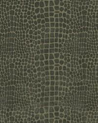 Covington Goochie 948 Charcoal Fabric