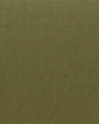 Covington Pebbletex 223 Sage Green Fabric