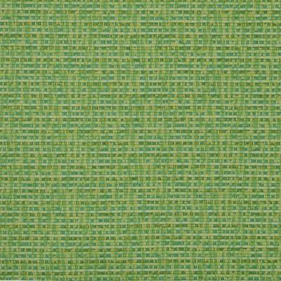 Covington RIAD 284 CITRUS Woven Fabric