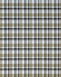 Covington Rockport 118 Sandstone Fabric