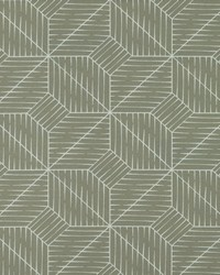 Covington Splanx 908 Platinum Fabric