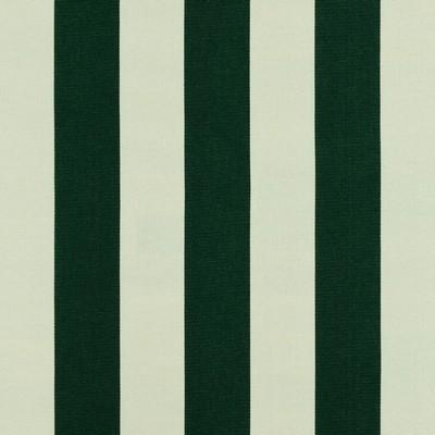 Covington SD-POLO STRIPE 247 FOILAGE Stripes and Plaids Outdoor Fabric