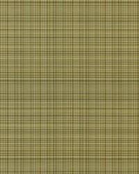 Covington Sebastian 114 Seashell Fabric