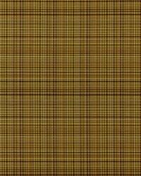 Covington Sebastian 361 Brown Blaze Fabric