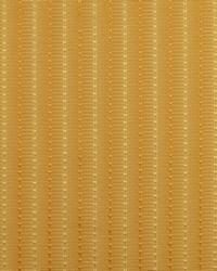 Covington Skylar 820 Empire Gold Fabric