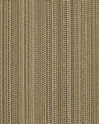 Covington Sd-tahiti 638 Plantation Fabric