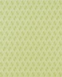 Covington Tiki 284 Citrus Fabric