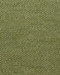 Covington Westfield 293 Basil Fabric