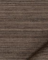 Robert Allen Aussie Espresso Fabric