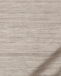 Robert Allen Aussie Graphite Fabric