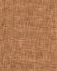 Robert Allen Desert Hill Auburn Fabric