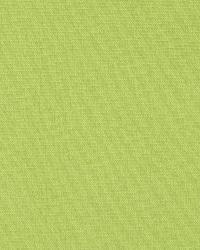 Robert Allen Canvas Texture Lime Fabric