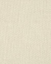 Robert Allen Canvas Texture Raffia Fabric