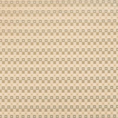 Fabricut Fabrics INGA CHAMPAGNE Search Results