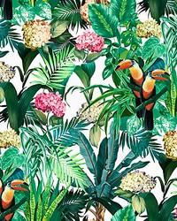 Scalamandre Blooming Tropical Bloom Fabric
