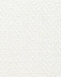 Scalamandre Sally Whitened Fabric