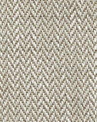 Scalamandre Marni Olive Gray Fabric