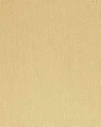 Scalamandre Modi Sand Fabric