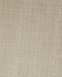 Scalamandre Smarter Fr Dove Fabric