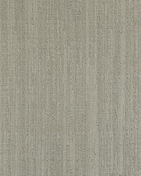 Scalamandre Raw Gray Stone Fabric