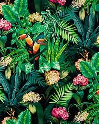 Scalamandre Blooming Night Bloom Fabric