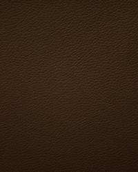 Scalamandre Storm Fr Dark Chocolate Fabric