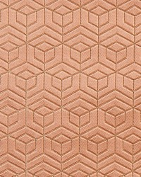 Scalamandre Hoopstar Coral Fabric