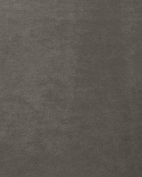 Scalamandre Project Water Repellent Ash Gray Fabric