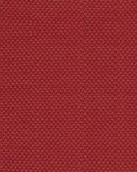 Scalamandre Scirocco Wide Ladybug Fabric