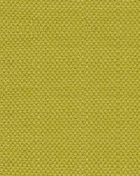 Scalamandre Scirocco Wide Ginko Fabric