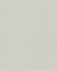 Scalamandre Aspen Brushed Ivory Fabric