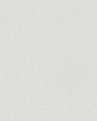 Scalamandre Aspen Brushed Paper White Fabric