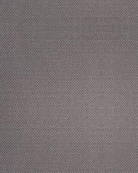 Scalamandre Aspen Brushed Wide Driftwood Fabric