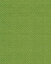 Scalamandre Scirocco Wide Tendril Fabric