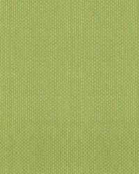Scalamandre Aspen Brushed Wide Lemonade Fabric