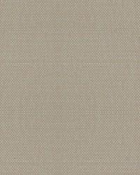 Scalamandre Aspen Brushed Wide Raffia Fabric