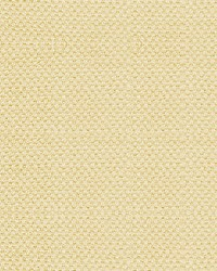 Scalamandre Scirocco Wide Creme Caramel Fabric