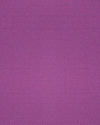 Scalamandre Aspen Brushed Wide Orchid Fabric