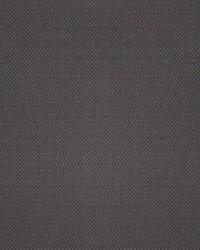 Scalamandre Aspen Brushed Wide Caribou Fabric