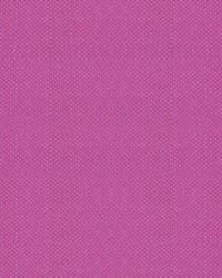 Scalamandre Aspen Brushed Wide Raspberry Fabric
