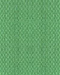 Scalamandre Aspen Brushed Wide Aventurine Fabric
