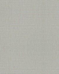 Scalamandre Aspen Brushed Wide Fennel Fabric