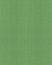 Scalamandre Aspen Brushed Wide Apple Green Fabric