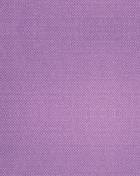 Scalamandre Aspen Brushed Wide Clover Fabric