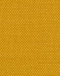 Scalamandre Aspen Brushed Daffodil Fabric