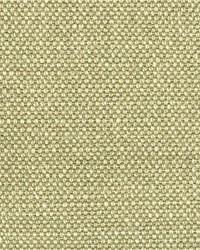 Scalamandre Aspen Brushed Hazelwood Fabric