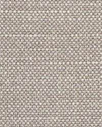 Scalamandre Aspen Brushed Putty Fabric