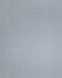 Scalamandre Aspen Brushed Platinum Fabric