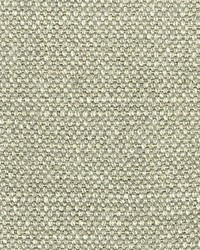 Scalamandre Aspen Brushed Chelsea Grey Fabric